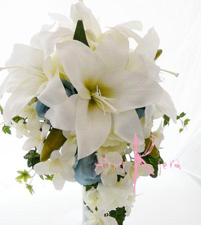 カサブランカ (植物)の画像 p1_18